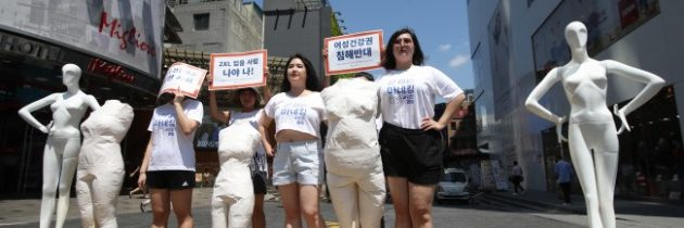 إنتقاد مناصري النسوية لمبدأ الحكم على مظهر الآخر، والدعوة إلى تنويعٍ أكبر لمقاسات الملابس في الأسواق