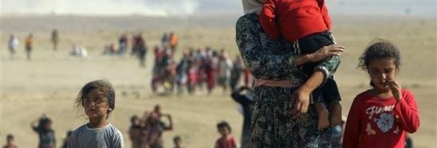 النازحات السوريات: ارتفاع معدل الولادات