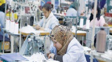 14 % نسبة مساهمة المرأة في سوق العمل