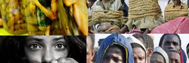 النساء والفتيات الأكثر تأثراً من جرائم الاتجار بالأشخاص