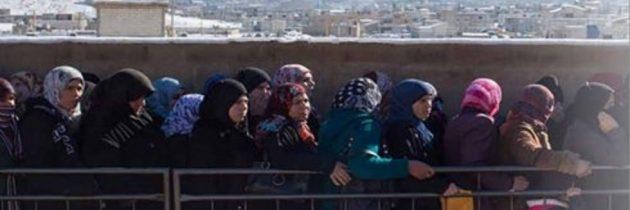 145,000 من اللاجئات السوريات يصارعن من أجل البقاء فيما يرأسن أسرهن بمفردهن